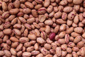 Можно ли беременным консервированную фасоль